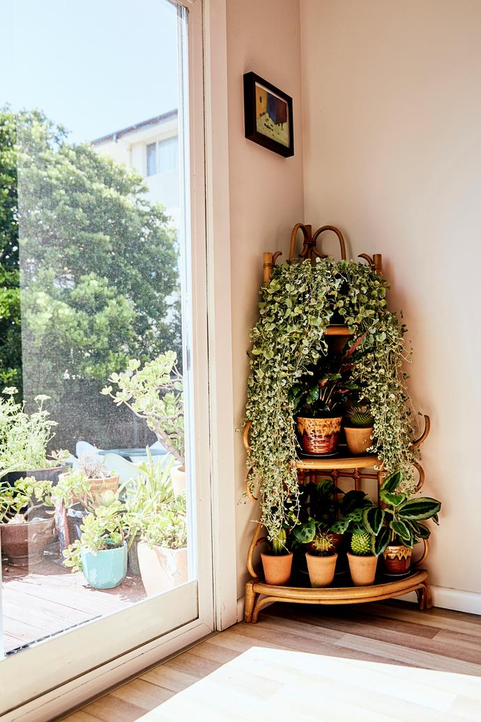 """There's always an abundance of plants in Ana's home. """"I like it feeling kind of jungle-like inside,"""" she says. """"It's nice to bring the outside in."""""""