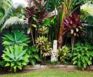 A Balinese-inspired garden in Sydney's Northern Beaches
