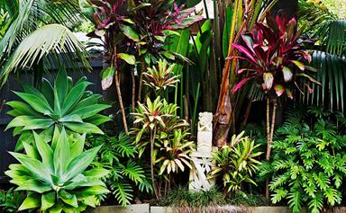 A Balinese-inspired garden in Sydney's Northern Beaches