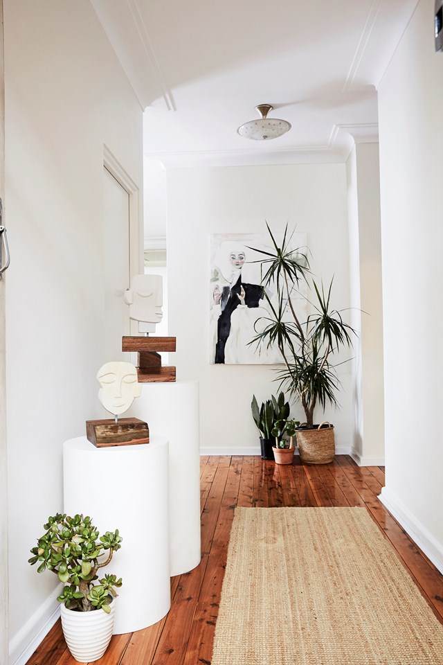 **Cornstalk dracaena** *(Dracaena fragrans)* <br><br>  Positioned here at the end of the hallway, Dracaena needs a light misting on its leaves and soil and filtered light. Consider a sheer curtain to protect it from direct sunlight. *Photo:* Kristina Soljo