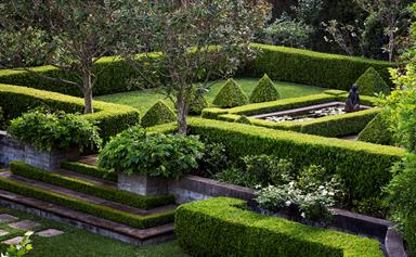 How a rocky slope became a manicured garden
