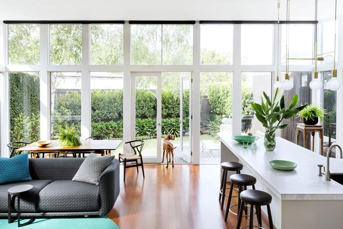 The Federation house was extensively renovated without changing the floor plan. This combined space at garden level allows Lulu, the family's Hungarian Vizsla pooch, to roam freely.