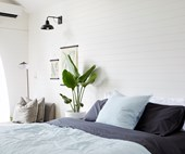Why Eucalyptus sheets should be on your shopping list