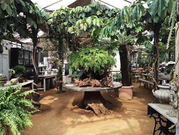 Savour seasonal fare at the Petersham Nurseries Cafe in Richmond, then browse in the shop and wander around the gardens. *Photo: bauersyndication.com.au*