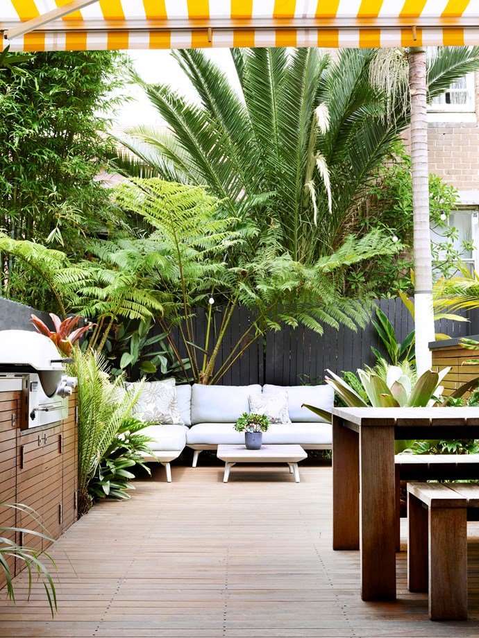 "This private 4.5 x 7m courtyard in Sydney's Bondi, designed by Quercus Gardens, recently won gold in the 'Less than 50m²' category at the [AILDM national landscaping awards](http://www.aildm.com.au/www/content/default.aspx?cid=707|target=""_blank""