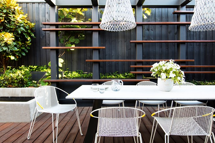 *Trachelospermum jasminoides* is being trained to grow up the steel mesh in this outdoor eating area. *Photo: Claire Takacs*