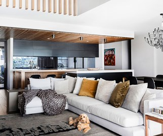 Inviting living room with dog