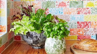 Tips for growing herbs indoors