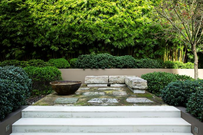 A Japanese maple overlooks the intimate courtyard. The crackle-glazed water bowl is from Vietnam.