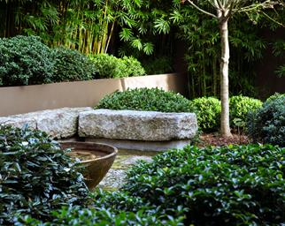 Garden with stone-walled pond