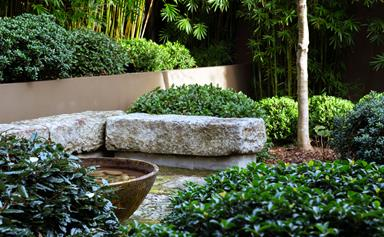 A Japanese-inspired garden on Sydney's north shore