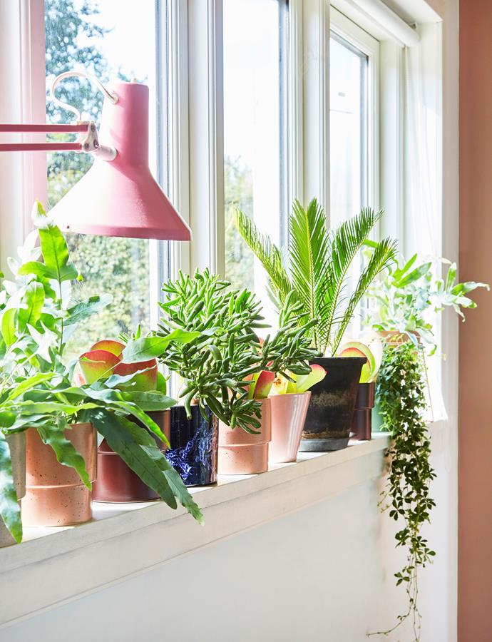 Photo: Anitta Behrendt/Living Inside | Styling: Pia Olsen