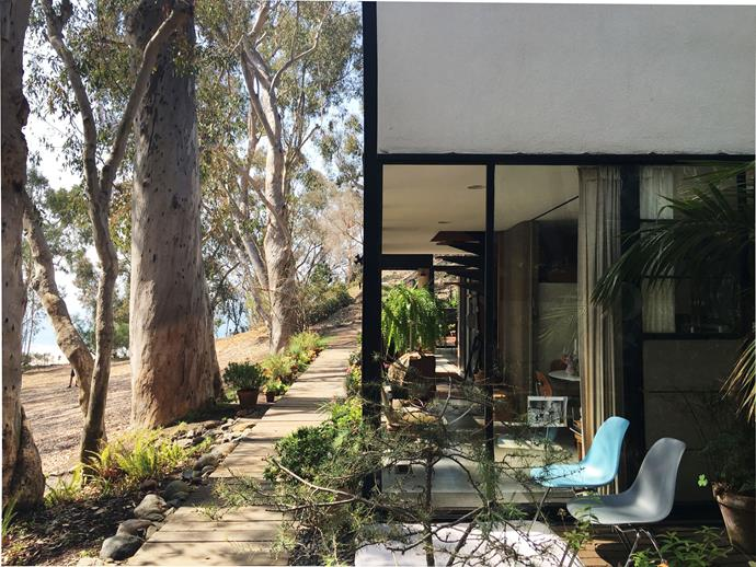 The Eames Case Study House is set among eucalyptus trees in Pacific Palisades.