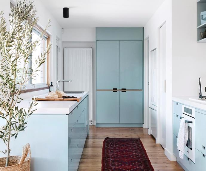 Pastel blue kitchen with timber flooring and indoor plant.