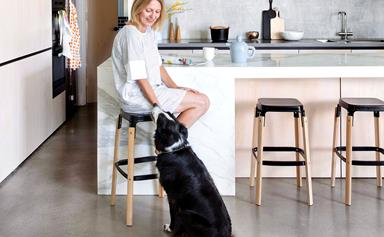 Handy home hacks for people with pets