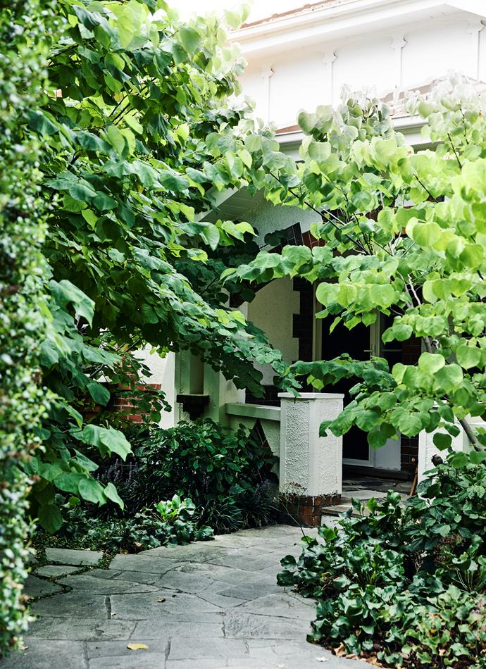 The now-verdant entrance has greatly enhanced the home's kerb appeal.