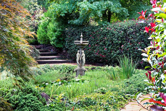 A goldfish pond with bronze fountain is the focal point of the Secret Garden. The pond is brimming with colourful waterlilies and irises; a hedge of Photinia 'Red Robin' encloses the space.