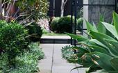9 stunning side garden ideas