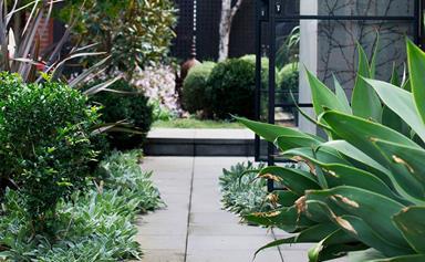 6 stunning side garden ideas