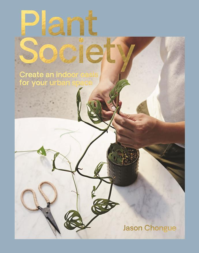 """Plant Society by Jason Chongue, $29.99, [Hardie Grant](http://www.hardiegrant.com/au/publishing/bookfinder/book/plant-society-by-jason-chongue/9781743793435