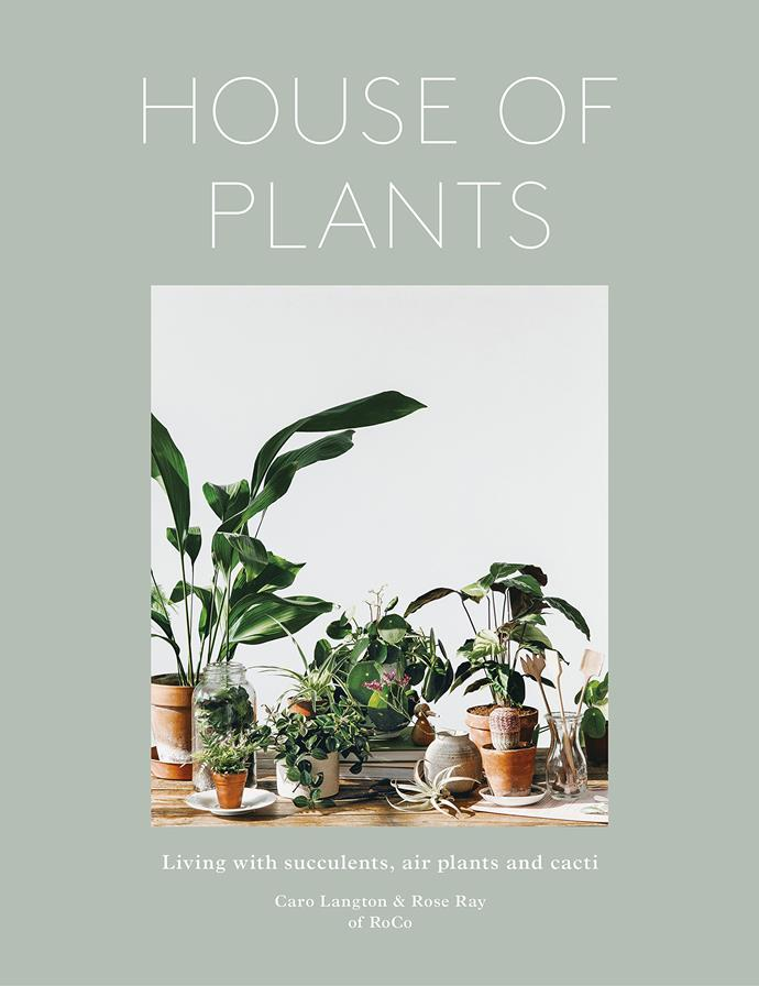 """House of Plants: Living with Succulents, Air Plants and Cacti by Caro Langton & Rose Bay, $29.99, [Frances Lincoln](https://www.quartoknows.com/books/9780711238374/House-of-Plants.html