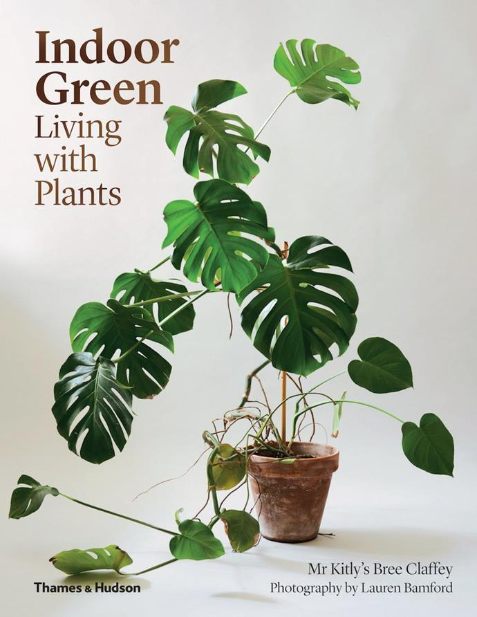 """Indoor Green: Living with Plants by Bree Claffey, $49.99, [Thames and Hudson](https://www.thamesandhudsonaustralia.com/product-page/indoor-green