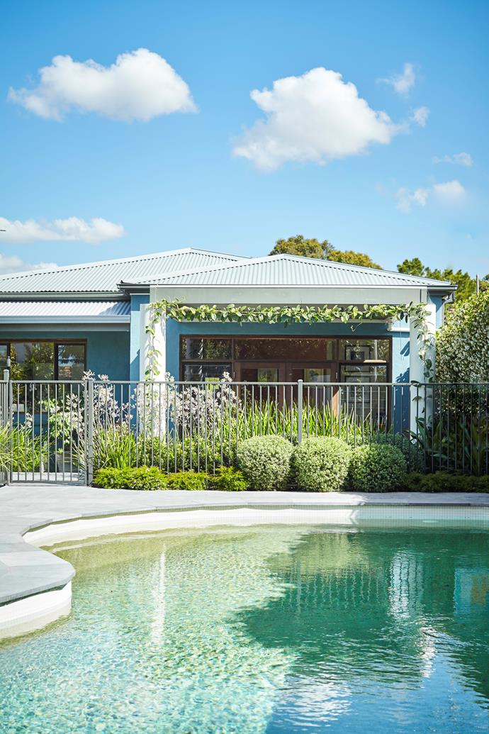 """Growing on the outside of the pool fence are Lomandra 'Katie Belles' and [Australian native](https://www.homestolove.com.au/how-to-grow-australian-native-flowers-6239