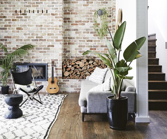 rustic living room bricks indoor plant