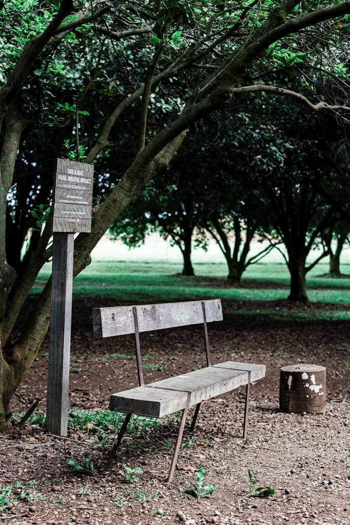 """""""Take a seat, pause, breathe, reflect - what are you grateful for""""? Asks the sign next to this sitting area on The Farm."""