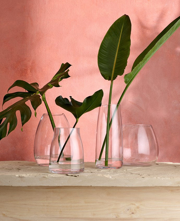 "[HERITAGE only at Myer clear glass vases](https://www.myer.com.au/webapp/wcs/stores/servlet/SearchDisplay?searchTermScope=&searchType=1002&filterTerm=&orderBy=0&maxPrice=&showResultsPage=true&langId=-1&beginIndex=0&sType=SimpleSearch&metaData=&pageSize=12&manufacturer=&resultCatEntryType=&catalogId=10051&pageView=image&searchTerm=&facet=mfName_ntk_cs%253A%2522Heritage%2522&minPrice=&categoryId=18553&storeId=10251|target=""_blank""