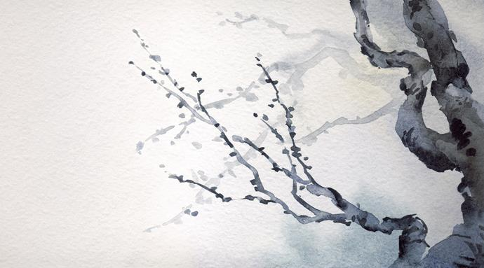 "Feathr ""Japanese Tree"" wall mural in Blue, $350 per roll (1.5m x 3.2m), [Radford Furnishings](https://www.radfordfurnishings.com.au/|target=""_blank""|rel=""nofollow"")."
