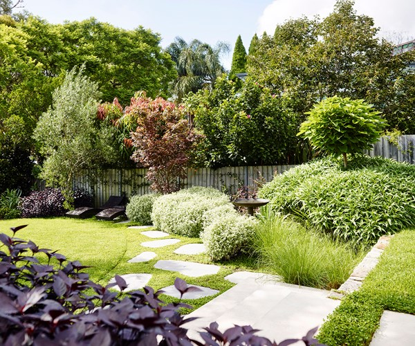 Small Backyard Trees 10 trees to plant in backyards big or small | homes to love
