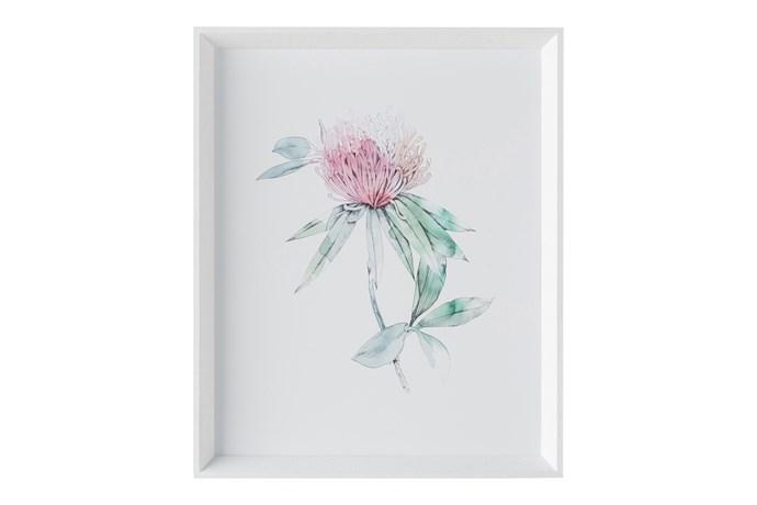 'Botanica' Wall Art (framed print behind glass) 47cm x 57cm, $299.95.