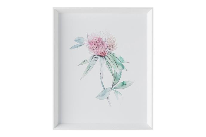 'Botanica' Wall Art (framed print behind glass) 47cm x 57cm, $299.95.