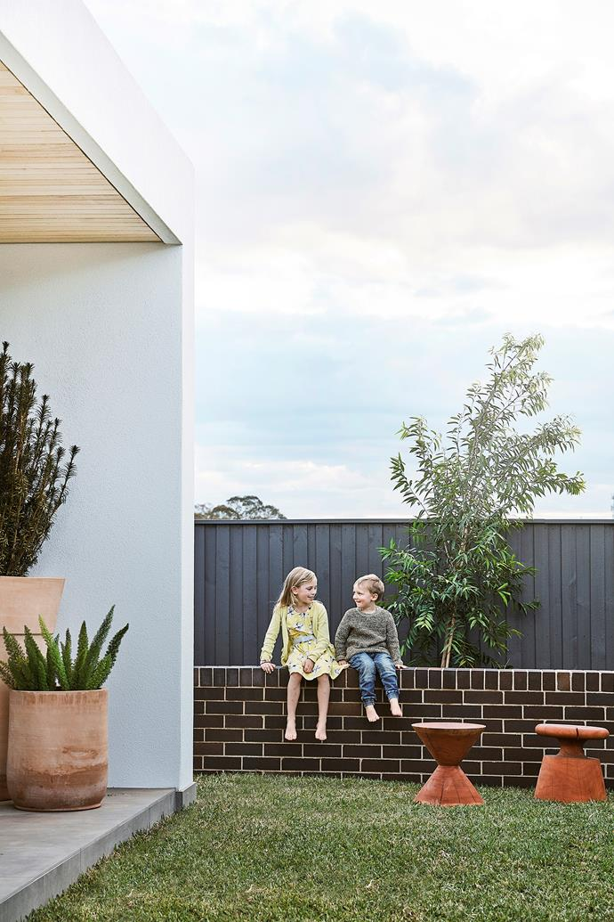 Thea and Henry perch on the Austral 'Bowral Blue' brick wall. A row of five weeping lilli pilli trees (Waterhousea floribunda) has been planted behind it and will mature to create a lovely privacy screen.
