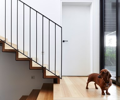 Architect-designed home with ramps for sausage dogs