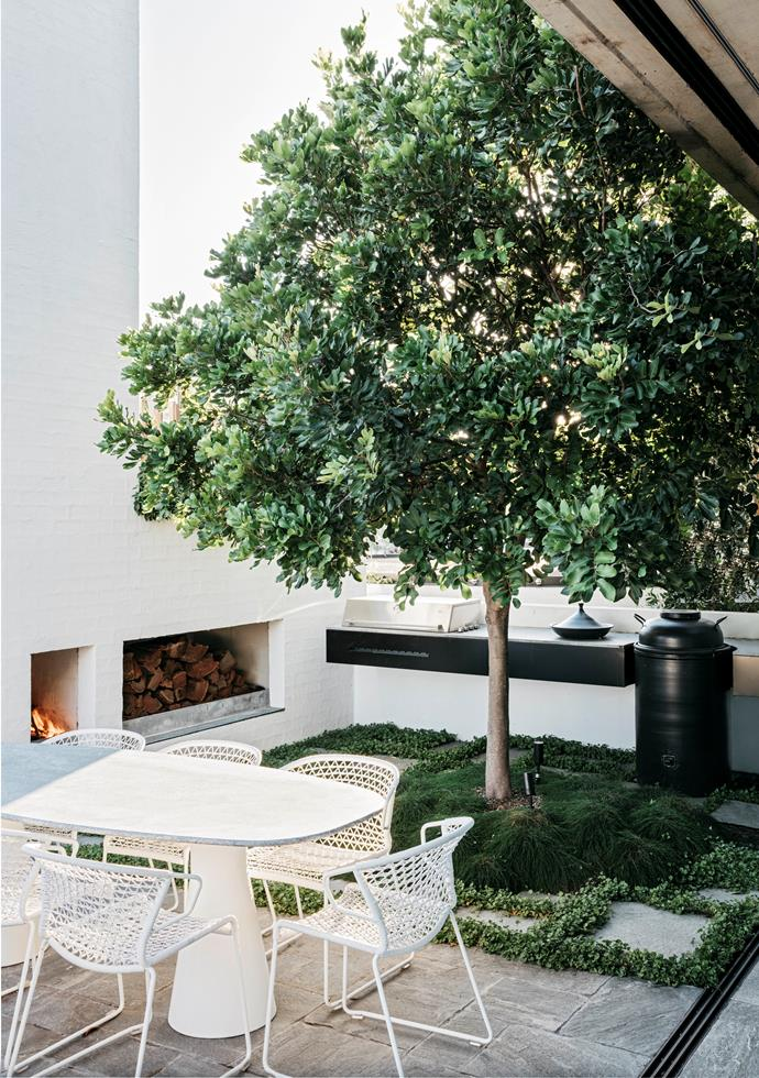 "The addition of an evergreen tuckeroo tree by landscape designer William Dangar provides a focal point and shade to this quaint courtyard [entertainment space](https://www.homestolove.com.au/a-rooftop-sydney-apartment-and-garden-5877|target=""_blank""). *Photograph*: Felix Forest. From *Belle* October 2017."