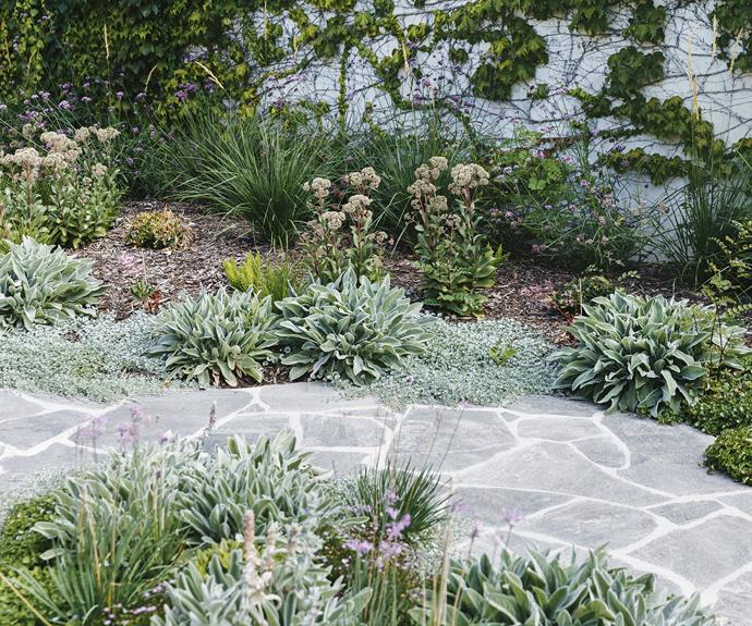 "**Paving** Brett chose the crazy paving for its texture and organic feel. ""Large square or rectangular paving can feel sterile, but crazy paving has a softening, calming effect,"" he says. ""It also adds elegance and a visual complexity."""
