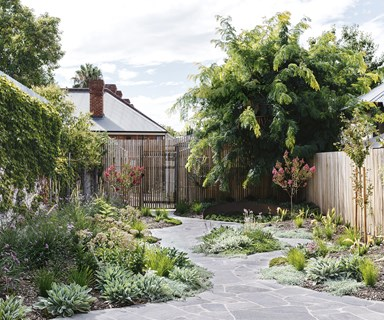 Pave the way: how a clever path design brought this garden together