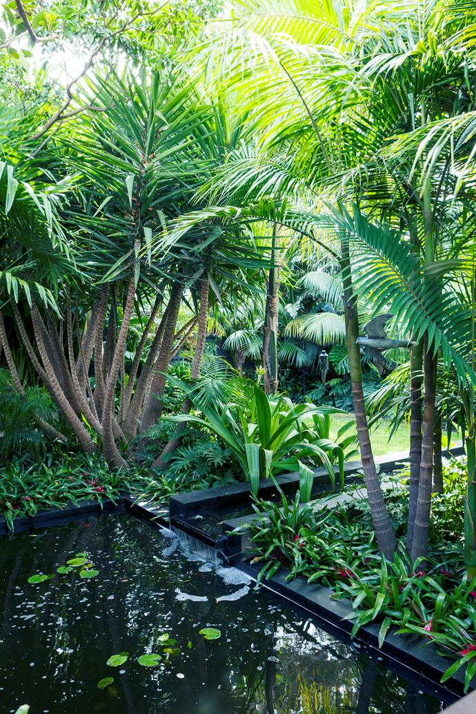 "Yuccas, Alexander palms and Bangalow palms are among John's favourites. ""I especially love the ringed patterning and lime-green colour of the palms,"" he says. The pond has been [planted with water lilies](https://www.homestolove.com.au/how-to-grow-water-lilies-9991