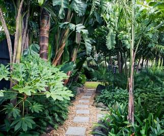 tropical garden australia