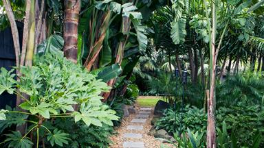 A tropical garden in the heart of Melbourne