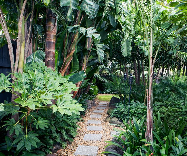 A Tropical Garden In The Heart Of Melbourne Australian House And Garden
