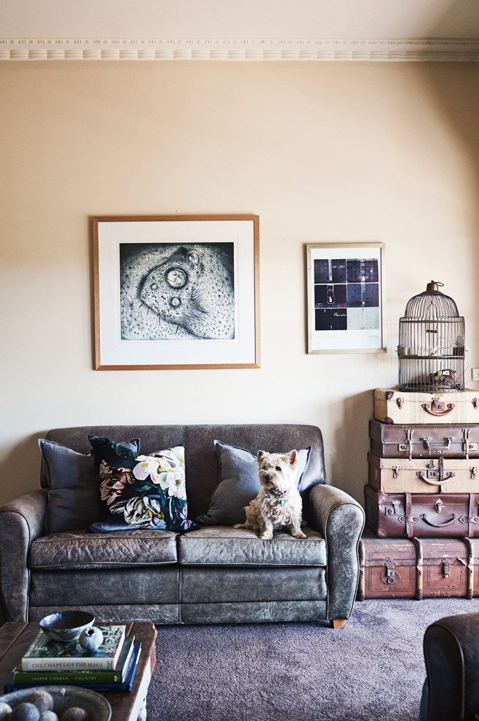 Misty claims her place on the sofa. The large artwork is 'Life in the Field with Small Things' by Jeff Gardner, while the print is by Leanne Shields.