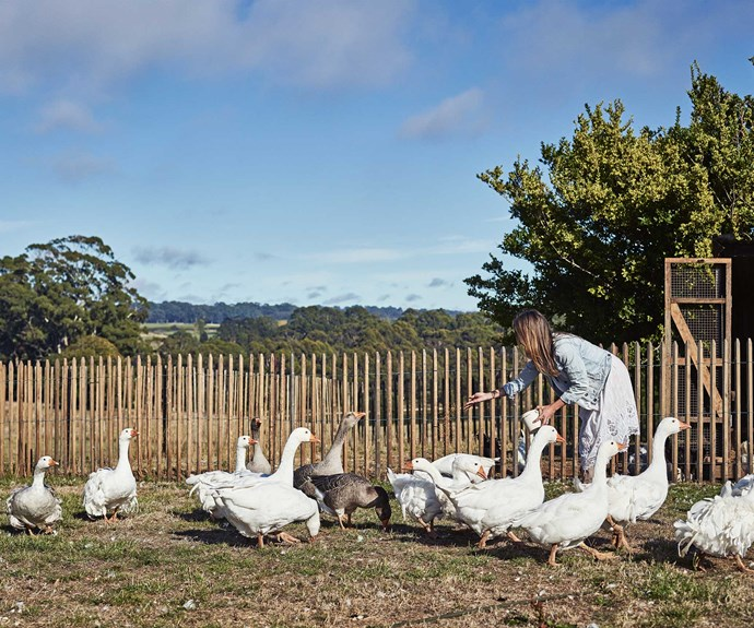 """Susan says, """"I've plucked the girls out of the city, with no mobile coverage and wifi here. They go to school in Kyneton now and they love it."""""""