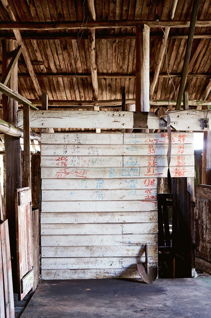The 1880s shearing shed is Susan and Annie's favourite building.