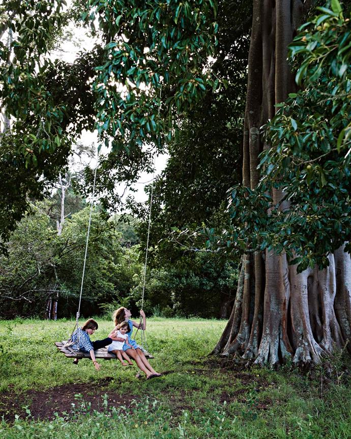 "Their three kids play on an oversized swing hanging from a giant [fig tree](https://www.homestolove.com.au/how-to-grow-figs-9452|target=""_blank"") on the property."