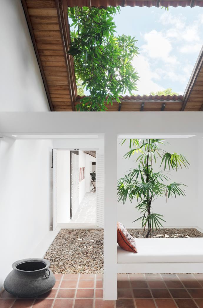 Arrayed around a main central courtyard, five smallers yards interlink the open-plan volumes of this Geoffrey Bawa designed home in Sri Lanka. *Photograph*: Nicholas Watt. From *Belle* August/September 2018.
