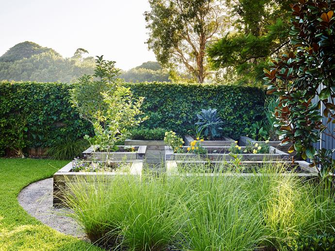 Not only do raised garden beds add structure and dimension to a garden, they make it much easier to harvest your home-grown herbs and vegies. *Photo: Anson Smart / bauersyndication.com.au*