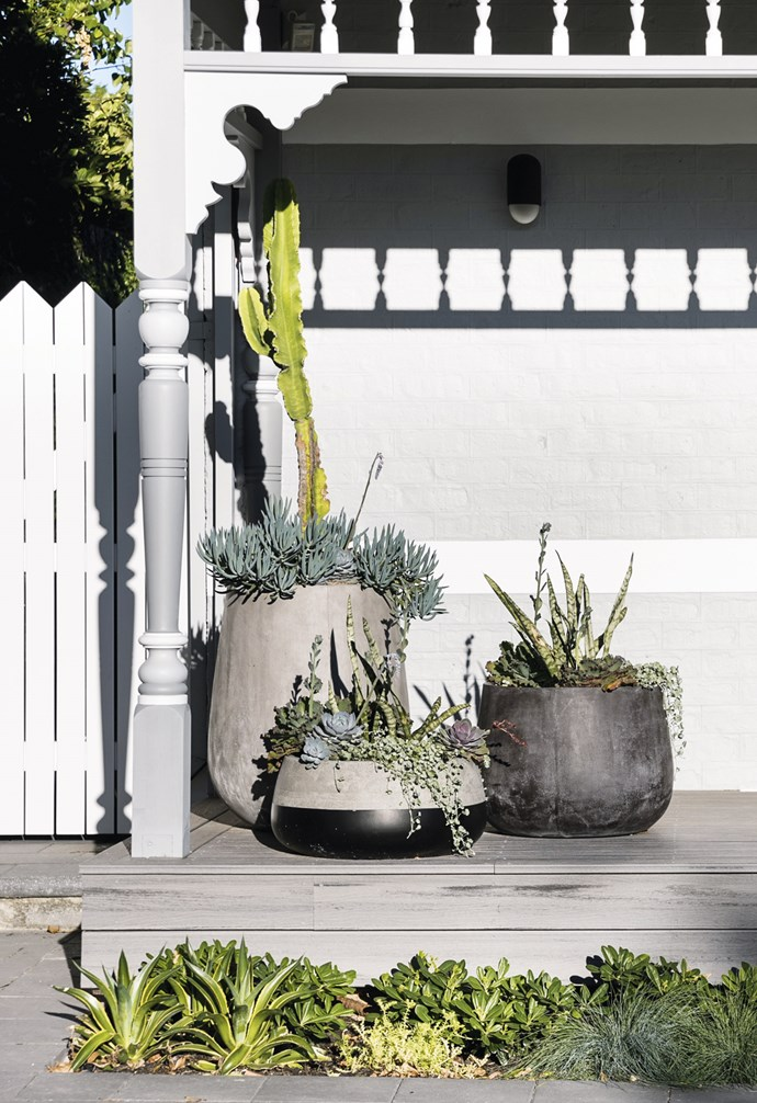 """**Triple threat** When it comes to display, odd numbers always beat even. Three coordinated pots make for a layered combo in this space by Felicia Brady. Give your green thumb a workout with a mix of textural succulents. *Design: Felicia Brady of [Feon Design & Consult](http://www.feon.com.au.php7-27.phx1-1.websitetestlink.com/